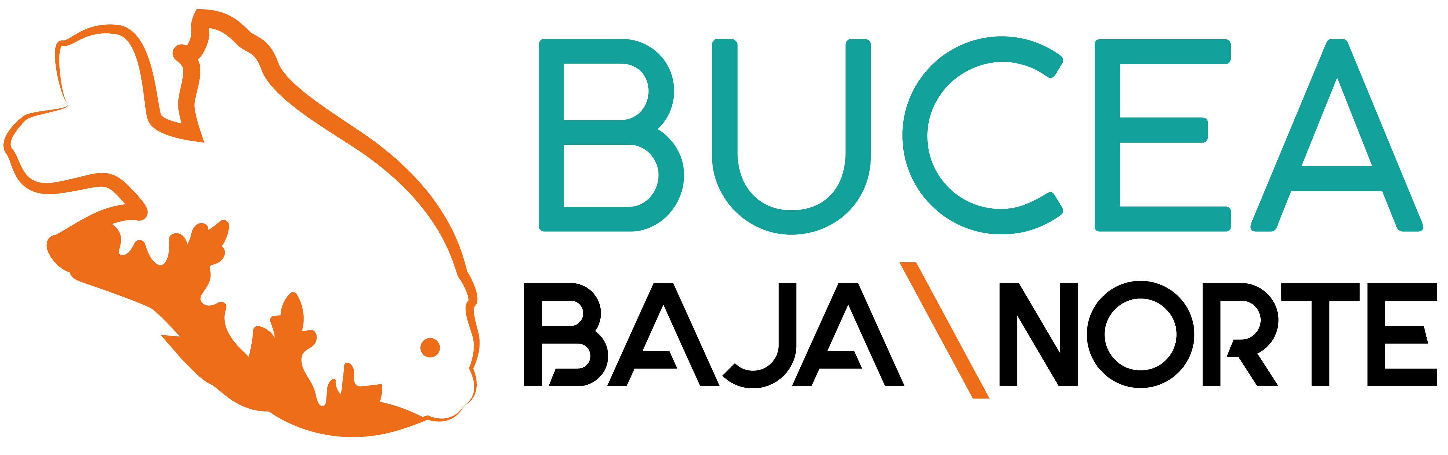 BUCEA BAJA NORTE